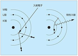 eds エネルギー分散型X線分光器 による元素分析 分析 故障解析