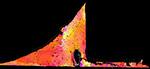 EBSD(電子線後方散乱回折法)を利用した結晶解析